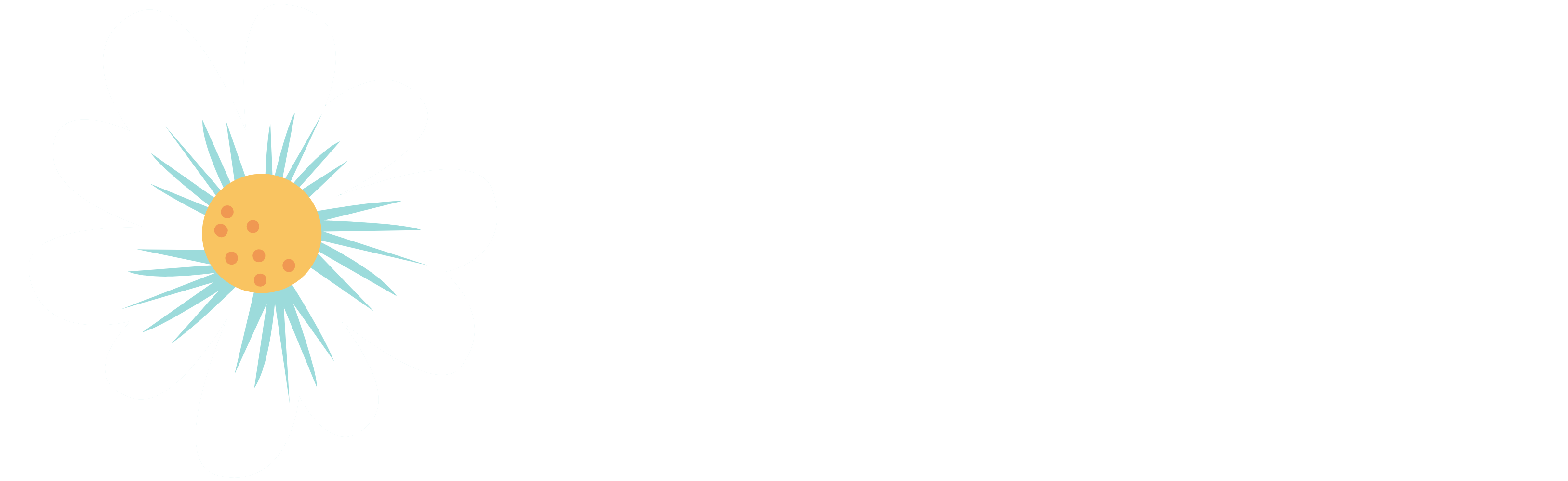 the daisy chain project logo